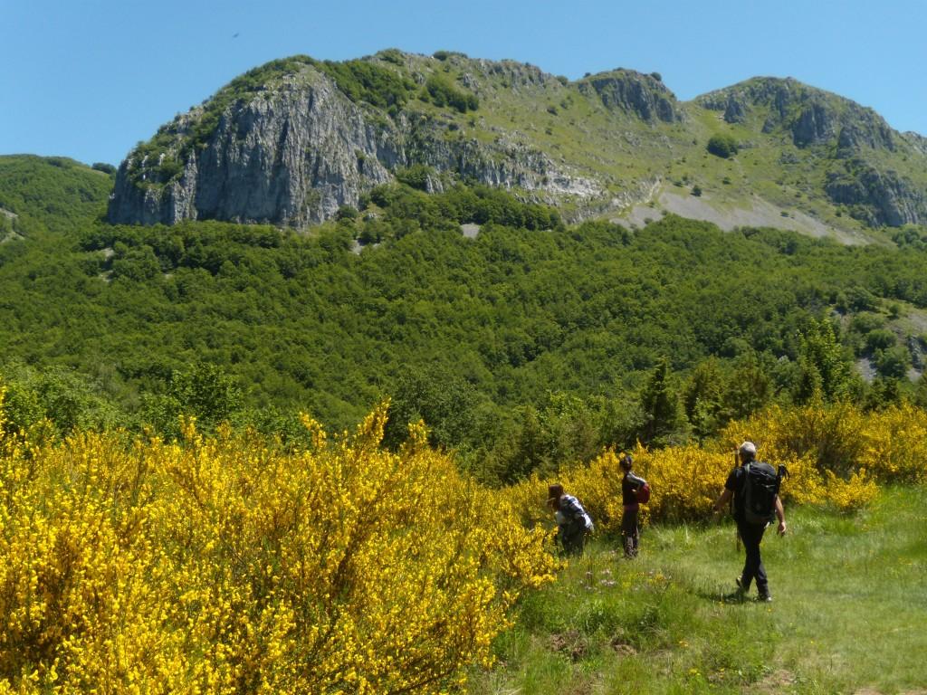 Pania di Corfino - Pania della Croce Garfagnana Travel