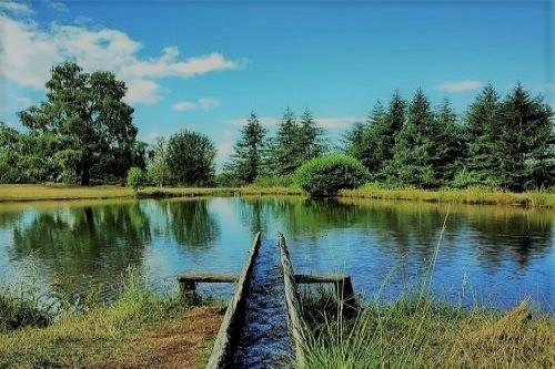 Parco naturale Orecchiella Patrimonio Unesco